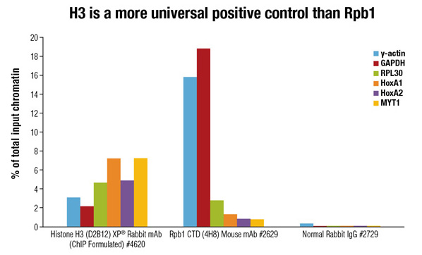 H3 is a more universal positive control than Rpb1