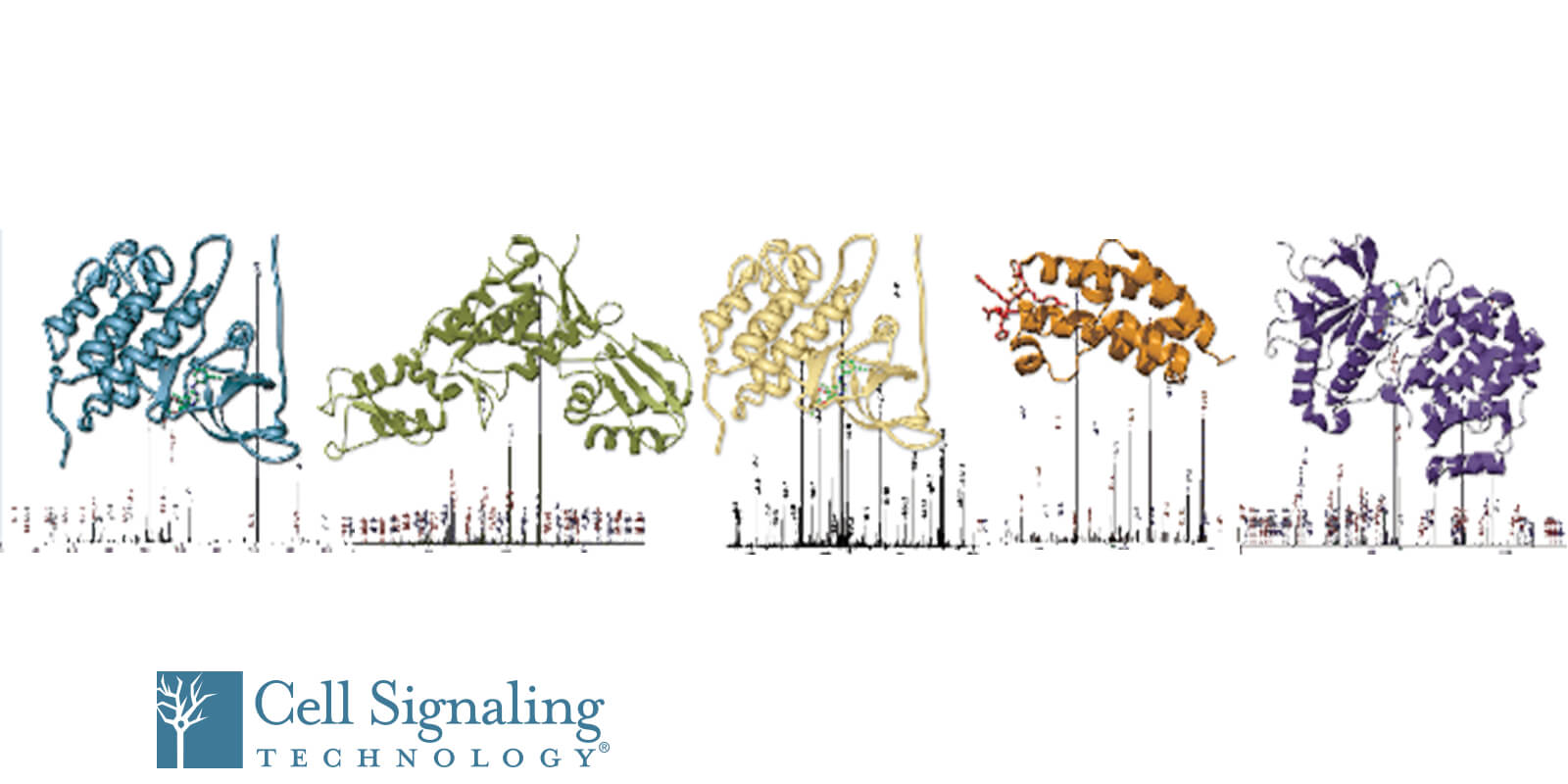 Webinar: Post Translational Modifications: Antibody Enrichment for Mass Spectrometry-based Proteomics