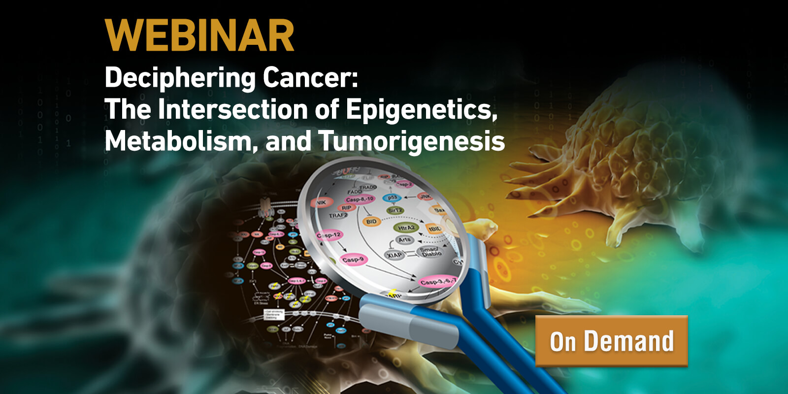 Deciphering Cancer Webinar from CST