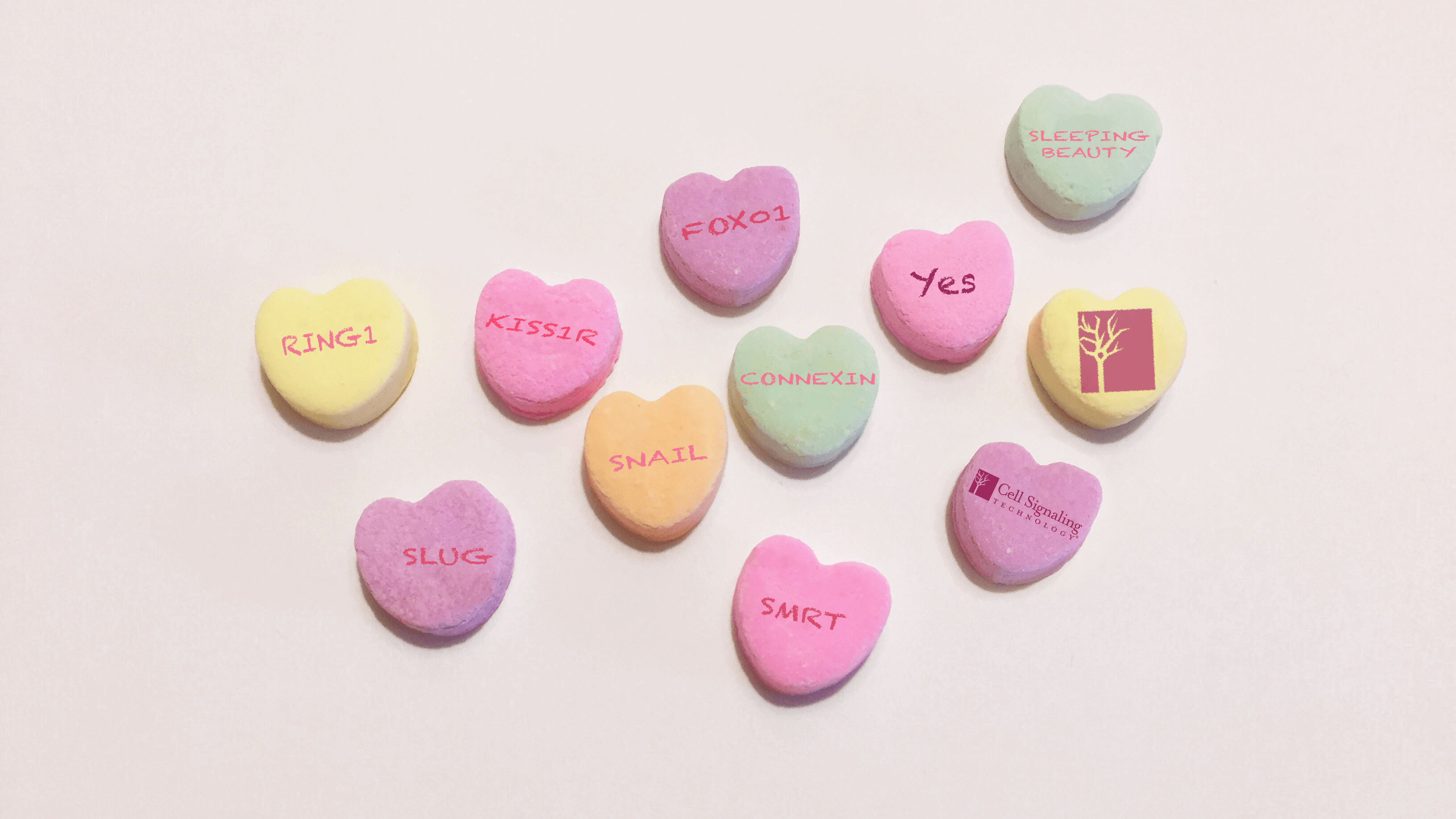 18_NOC_Valentines_Day_Candy_Hearts.png