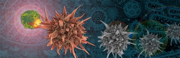 Immunotherapy-Banner2