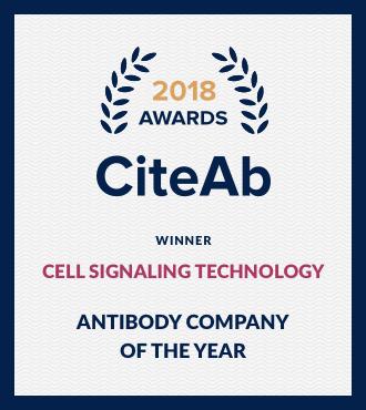 Antibody_Company[1].png